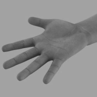 فال   انگشت