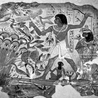 فال و طالع بینی   مصری