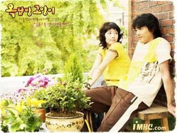 سریال کره ای گربه ای روی شیروانی