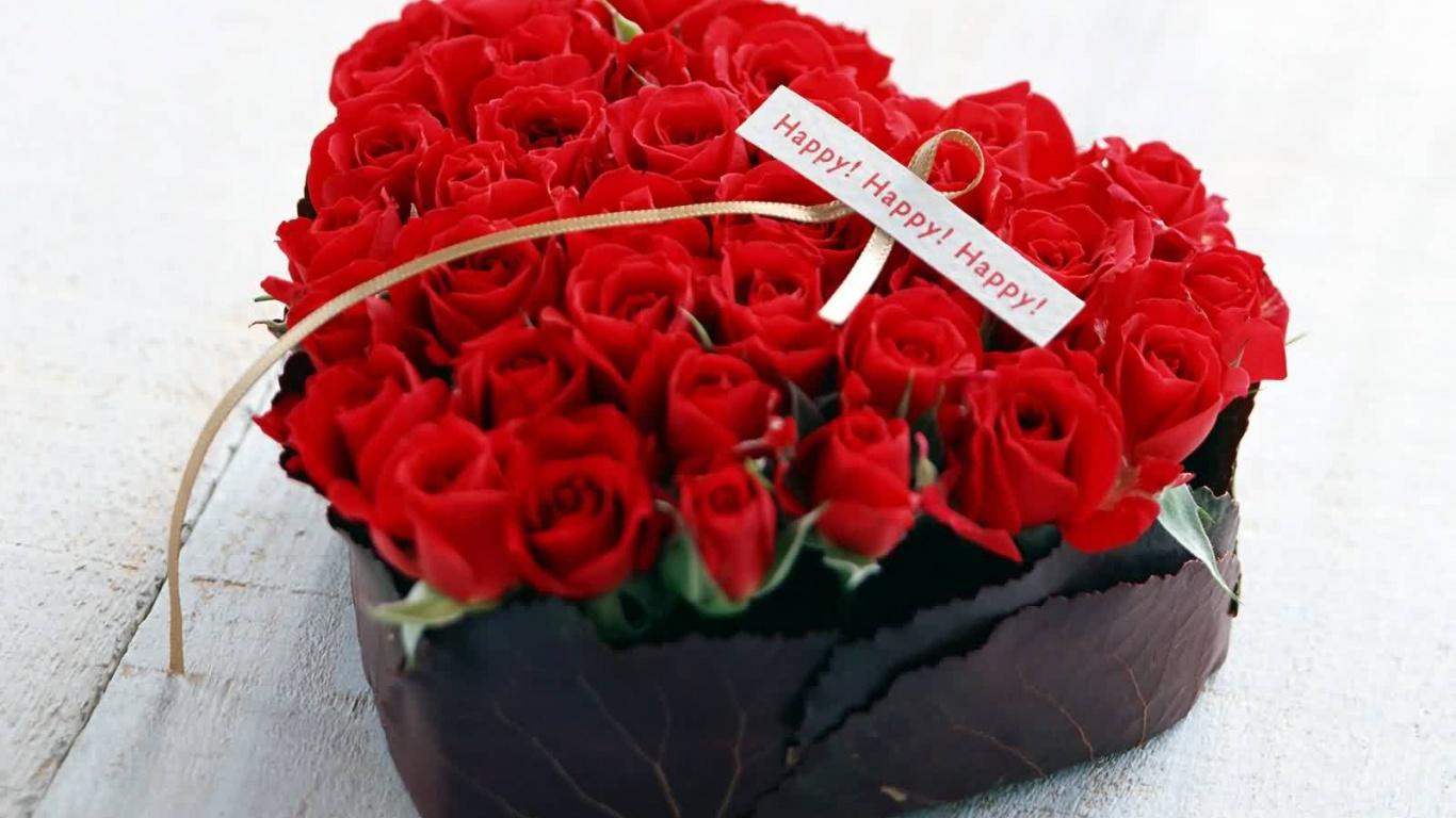 عکس زیبا و باکیفیت گل سرخ مناسب والپیپر دسکتاپ
