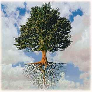 فال طالع بینی درخت